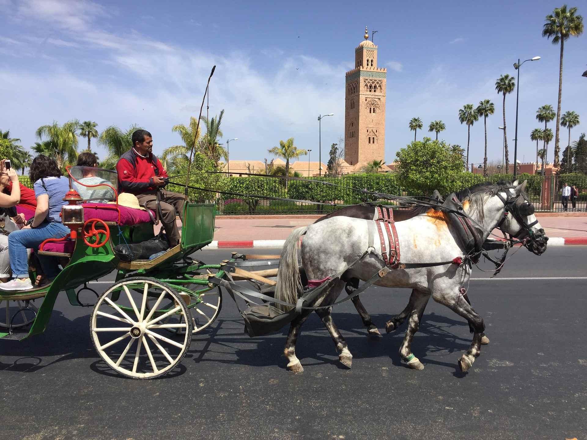 Marrakesh - morocco vacations