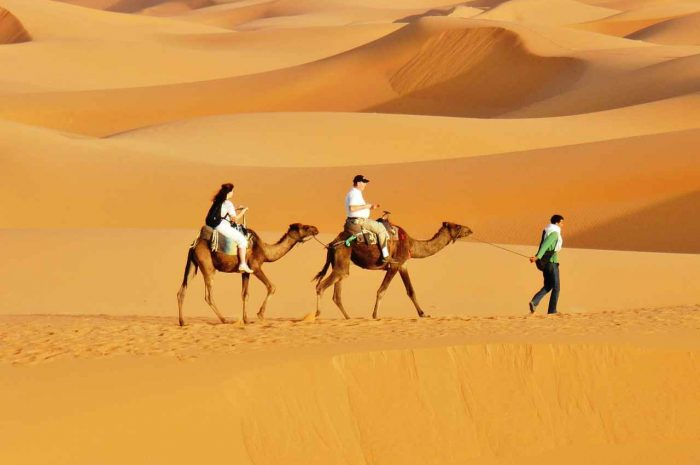 Marrakesh desert tours