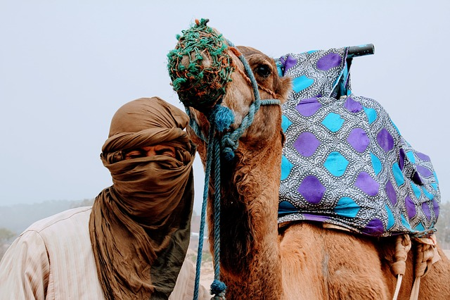 Tourism: Morocco soon among the 20 best destinations in the world?